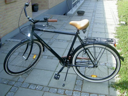 Leisure bike