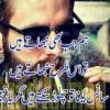 shayan ghouri profile image