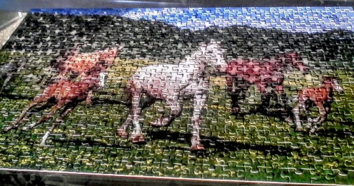 Jig saw puzzle of horses. Put together by Rosa Ann Crowder