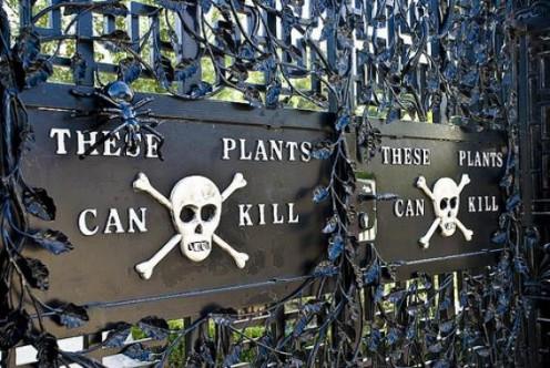 Poison Garden Entrance
