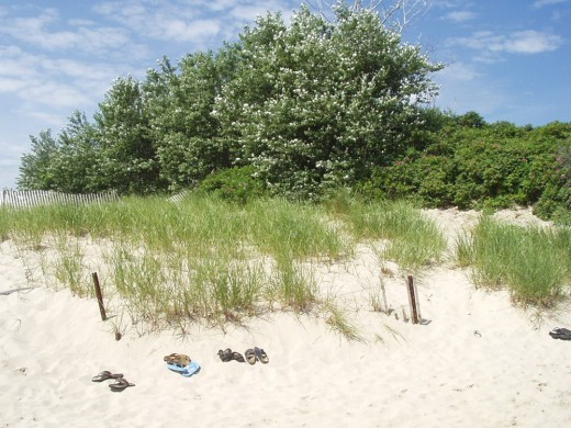 Chatham's Lighthouse Beach is an enticement to bare feet. / E. A. Wright 2009