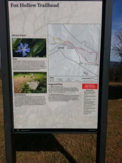Hiking Trail Guide: Fox Hollow Nature Trail in Shenandoah National Park