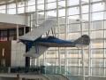 Beware of Low Airfare Deals