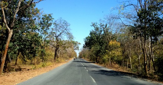 State highway to Sirpur : another view