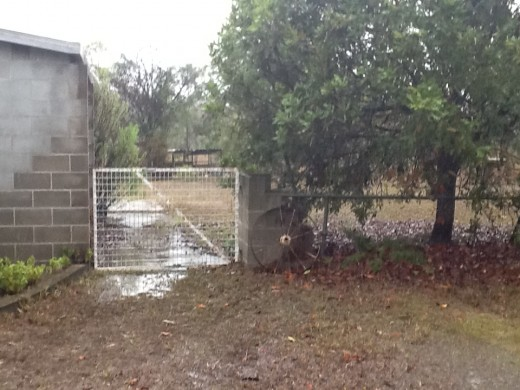 120 mm (approx 5 inches) of rainfall was most welcome
