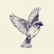 The Black Sparrow profile image
