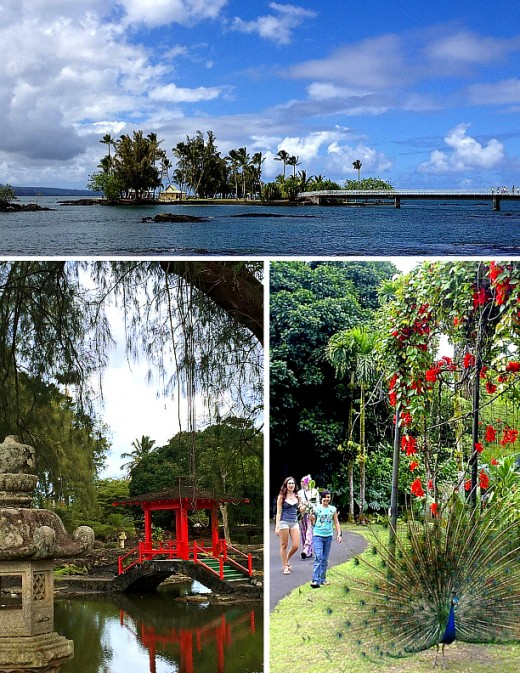 Top: Coconut Island. Bottom left: Pana'ewa Zoo. Bottom right: Japanese Garden.