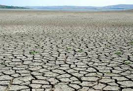 A severe drought.. dry and tough