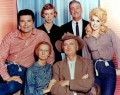 11 Reasons Why I Would Have Made it on The Beverly Hillbillies
