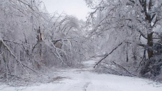 The damage left in the wake of an ice storm (January 2009, Arkansas).