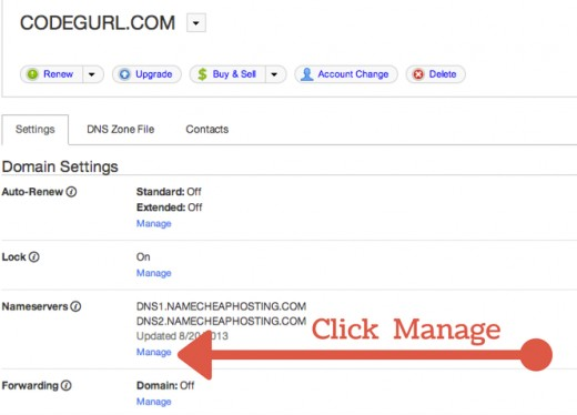"Click ""Manage""€ in the nameservers section"