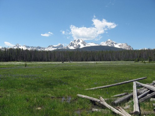 Sawtooths from Stanley Lake Creek