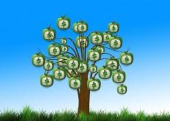 Shareholder Equity Explained
