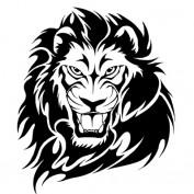 prohormones profile image
