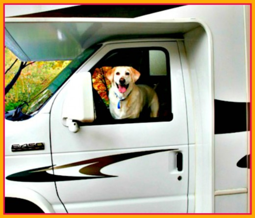 Barking dogs are not fun to have as next door neighbors, especially in RV Parks!