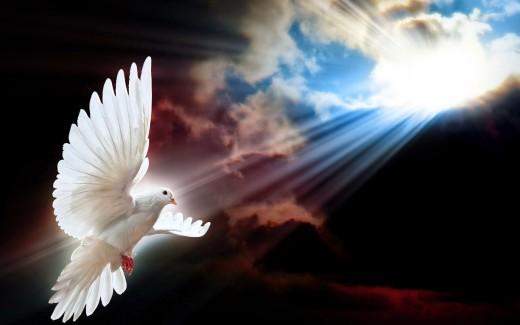 to reach eternal life