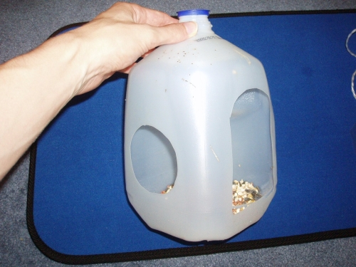 Here is a milk jug I used