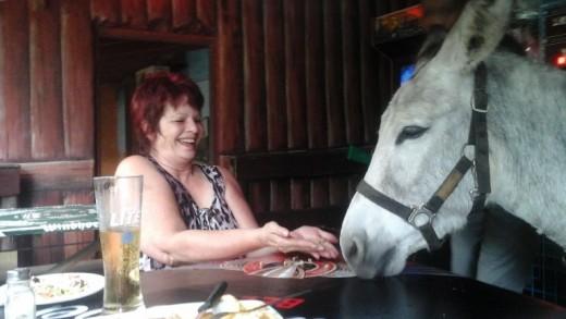Huckleberry Donkey, Pistols Saloon, Ramsgate, KwaZulu-Natal