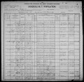 Using Census Records Online