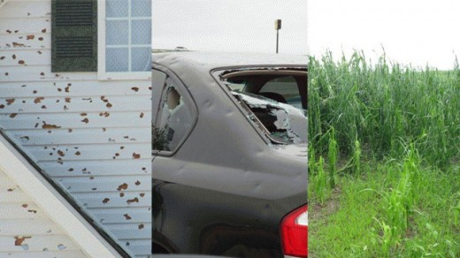 Hail damage to property...
