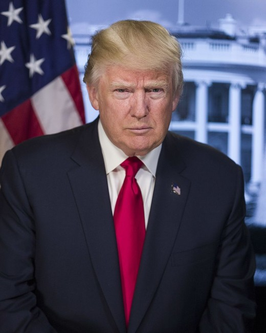 Businessman and politician, Donald Trump was born and raised in Queens.  Trump took charge of the family business, The Trump Organization and ran it for four and a half decades.  In 2017 he became the 45th president of the United States.