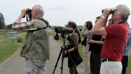 A group of people learning how to or gaining bird watching tips from the experienced.