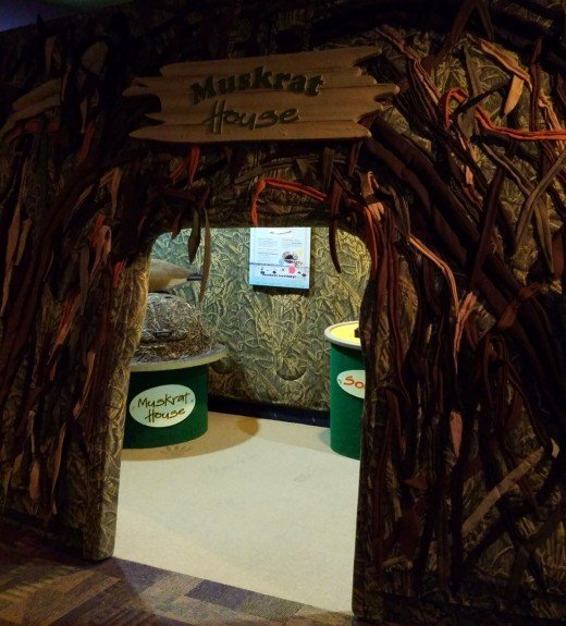 My son's favorite spot - the Muskrat House.