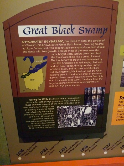 Information about the Great Black Swamp.