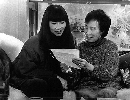 the psychology of language discrimination english as a language  amy tan mother