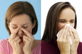Sinus and sneezing are symptoms of mold