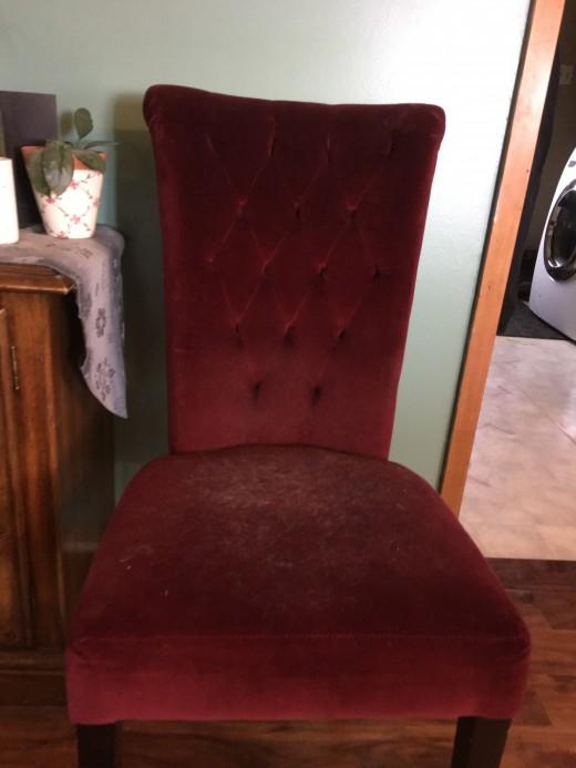 Velvet chair before cleaning Miss kittys favorite chair