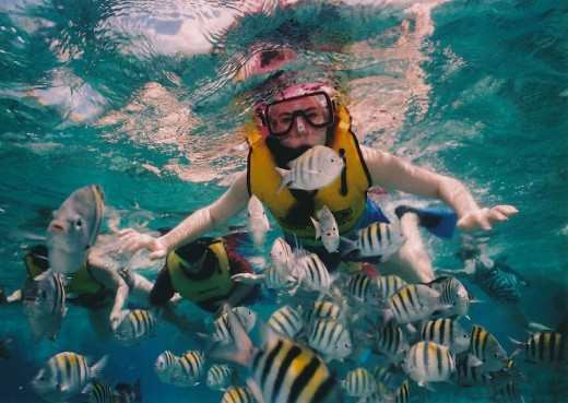 Reef snorkeling is popular on western Caribbean cruises, especially in Cozumel, Roatan and Belize.
