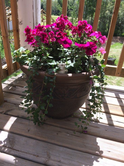 Side view of monochromatic patio container