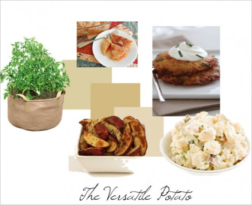 Potatoes are so vesatile as seen in this photo above. From your potato salads to potato latkes..the sky is the limit!