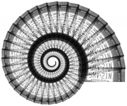 A nautilus shell is similar to and different from polar graphs.