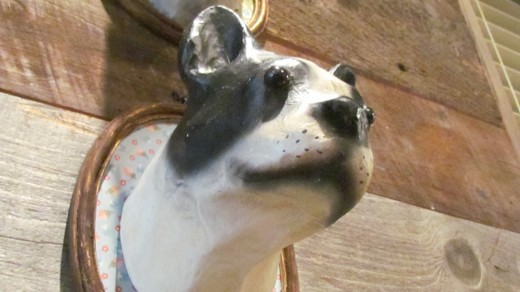 A photo of one of the adorable statues of a dog that is featured on the wall of the café.