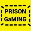 Prison Gaming profile image