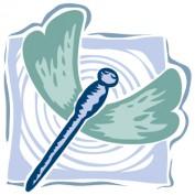 Joan Dragonfly profile image