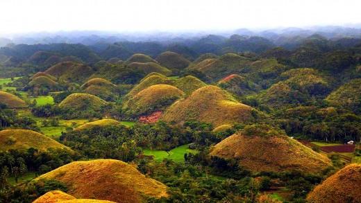 Chocolate Hills of  Bohol