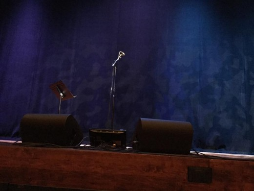 Annmarie's photo of the stage two rows back.