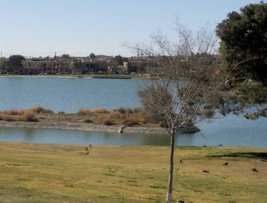 Lake in the middle of Fountain Hills