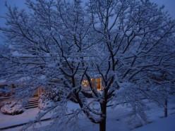 The Third Snowfall