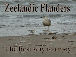 How to Enjoy Your Visit to Zeelandic Flanders the Best Way