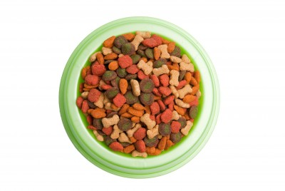 Buy less expensive BUT HEALTHY dog or cat food!