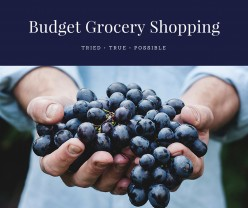 Budget Grocery Shopping: The How-Tos & How-Nots