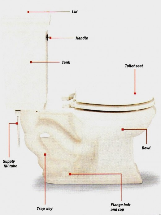 Chart of a toilet (click to enlarge)
