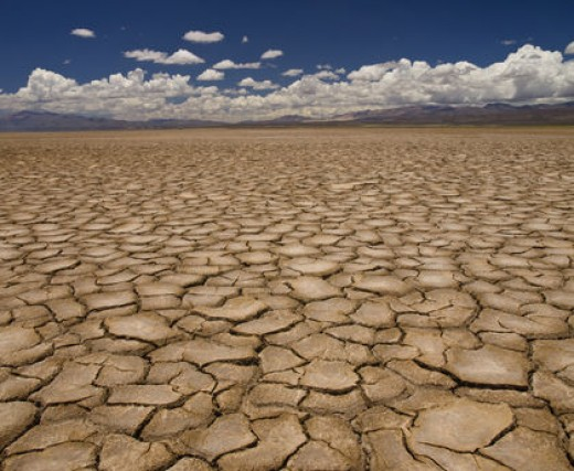 Dry and Parched Land