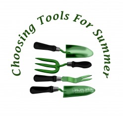 Essential Gardening Tools for Beginners and How to Pick Them