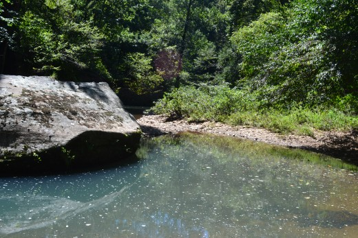 Bell Smith Springs, Shawnee National Forest, Southern Illinois.