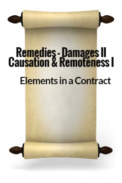 Elements in a Contract XXII - Remedies -Damages II - Causation & Remoteness I